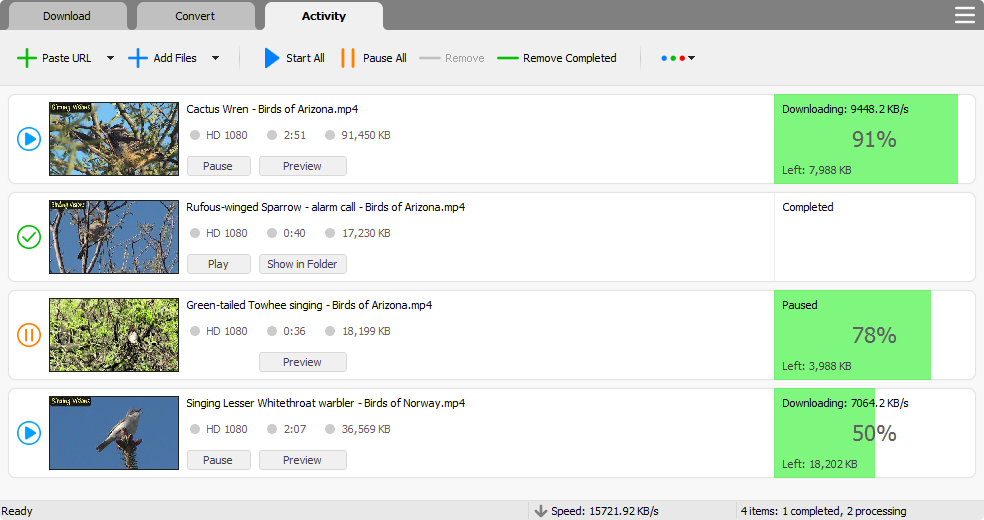 video exe download
